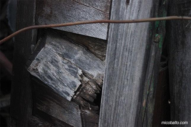 micobalto-paseoenblanco-16